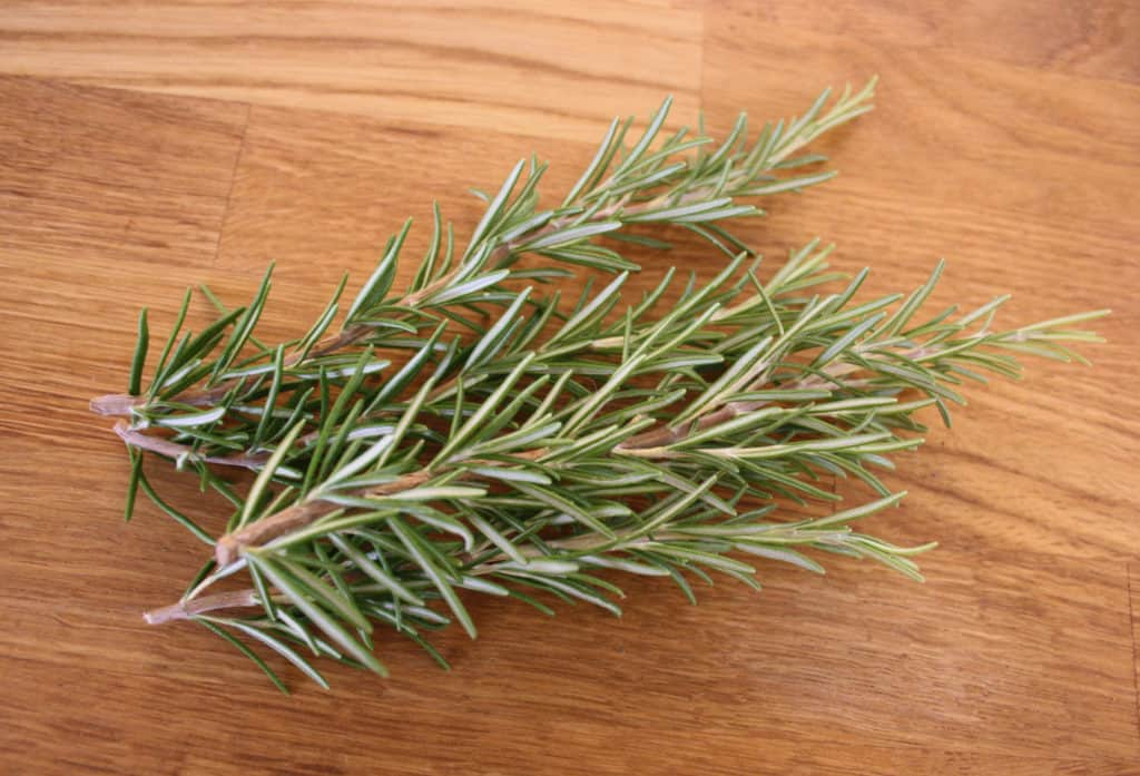 picture of rosemary sprigs