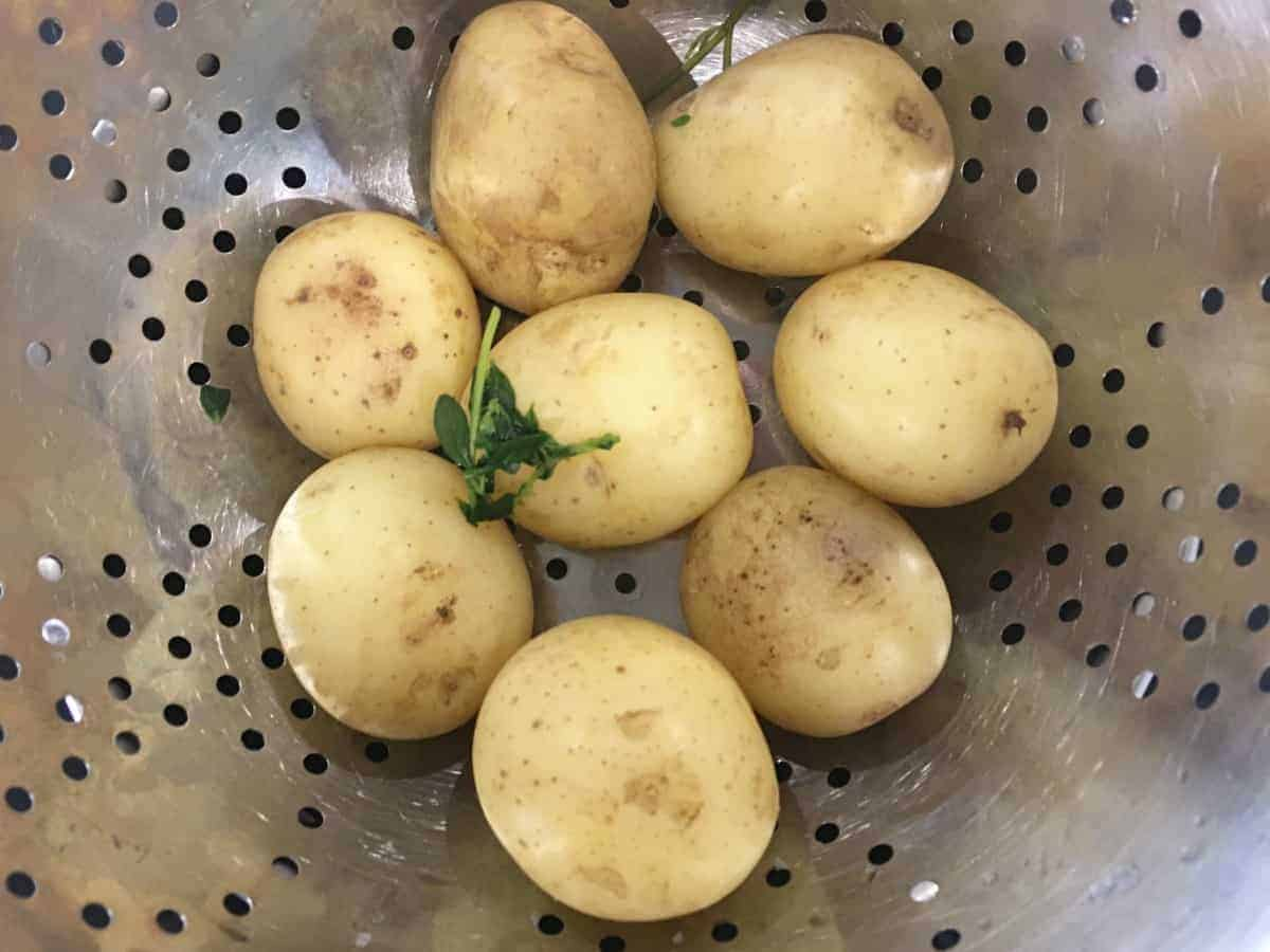 cooked potatoes in a colander
