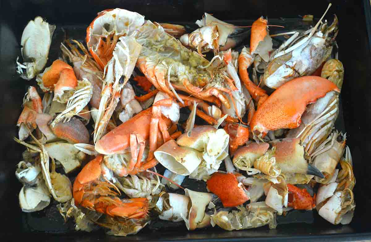 tray filled with crab, prawn and lobster.