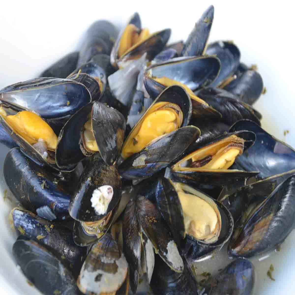 close up view of mussels in white wine.
