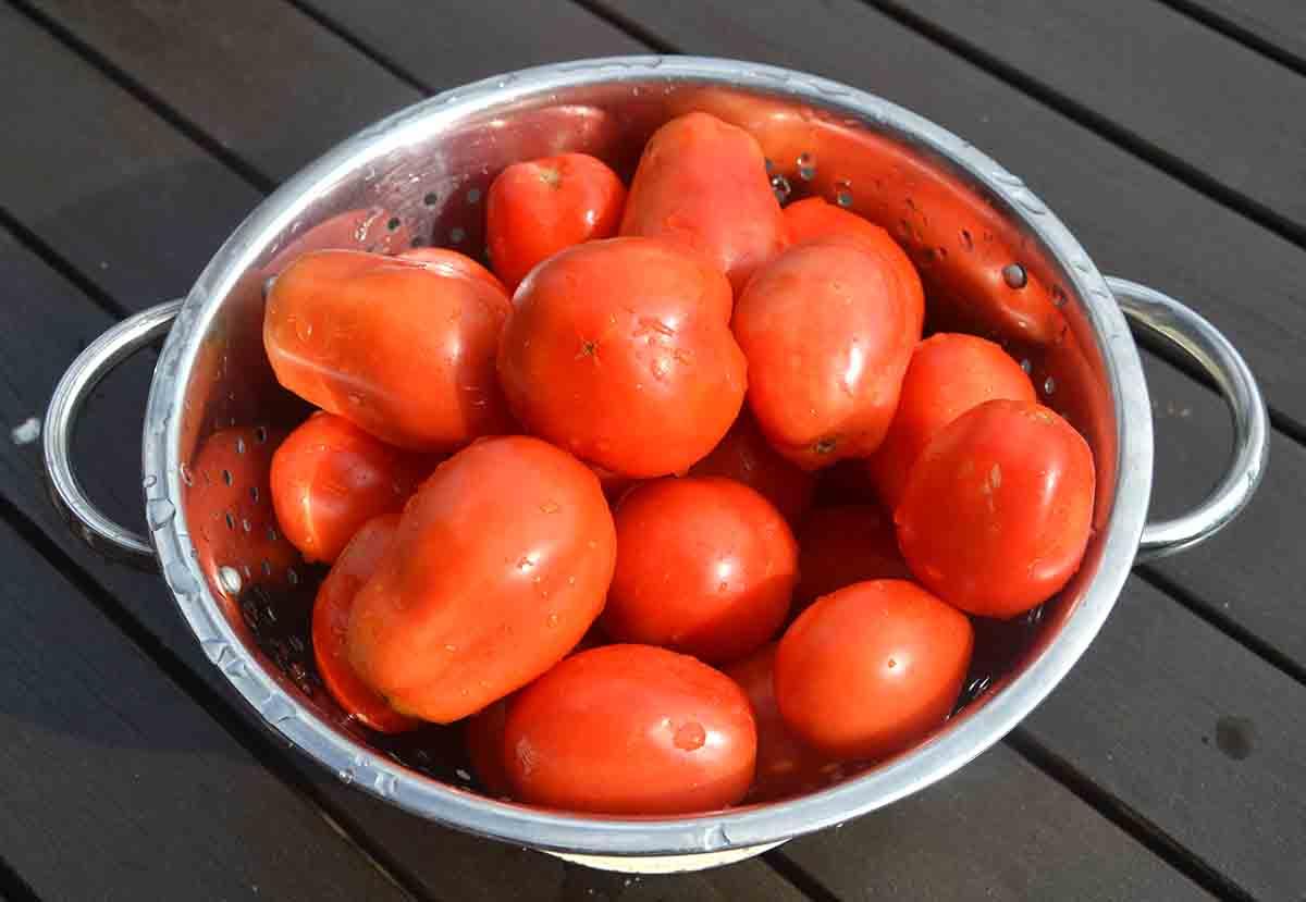 colander full of whole plum tomates.