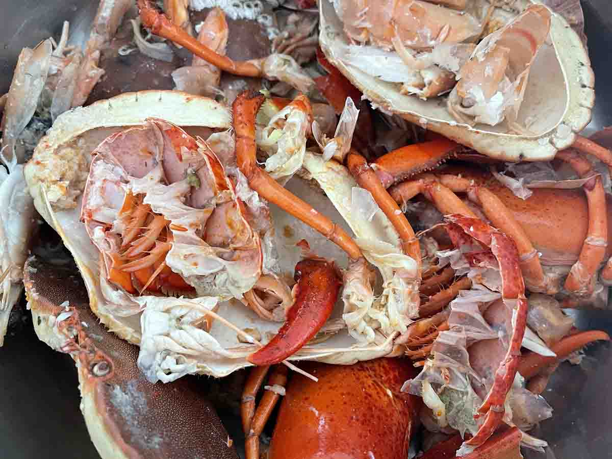 selection of lobster, crab and prawn shells.